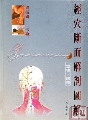 經穴斷面解剖圖解(頭頸˙胸部)183.jpg